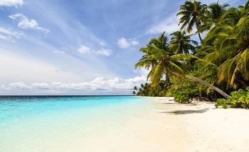 Partir aux tropiques en hiver... Est-ce une bonne idée ?