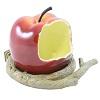 Offre jusqu'à 0.8€ sur une mangeoire en forme de pomme pour oiseaux