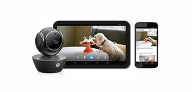 Bon plan Consoanimo: la caméra de vidéo surveillance Scout à tester