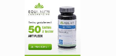 Test produit Betrousse: Artiflexx