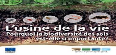 Échantillon gratuit: l'Usine de la vie sur la biodiversité