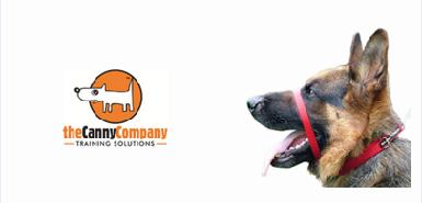 Le collier d'éducation pour chiens gratuit sur ConsoAnimo