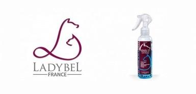 Obtenez gratuitement le Spray demêlant Demel'ex de Ladyb