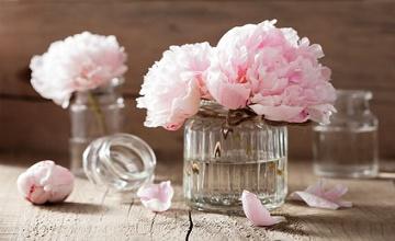conserver un bouquet de fleur